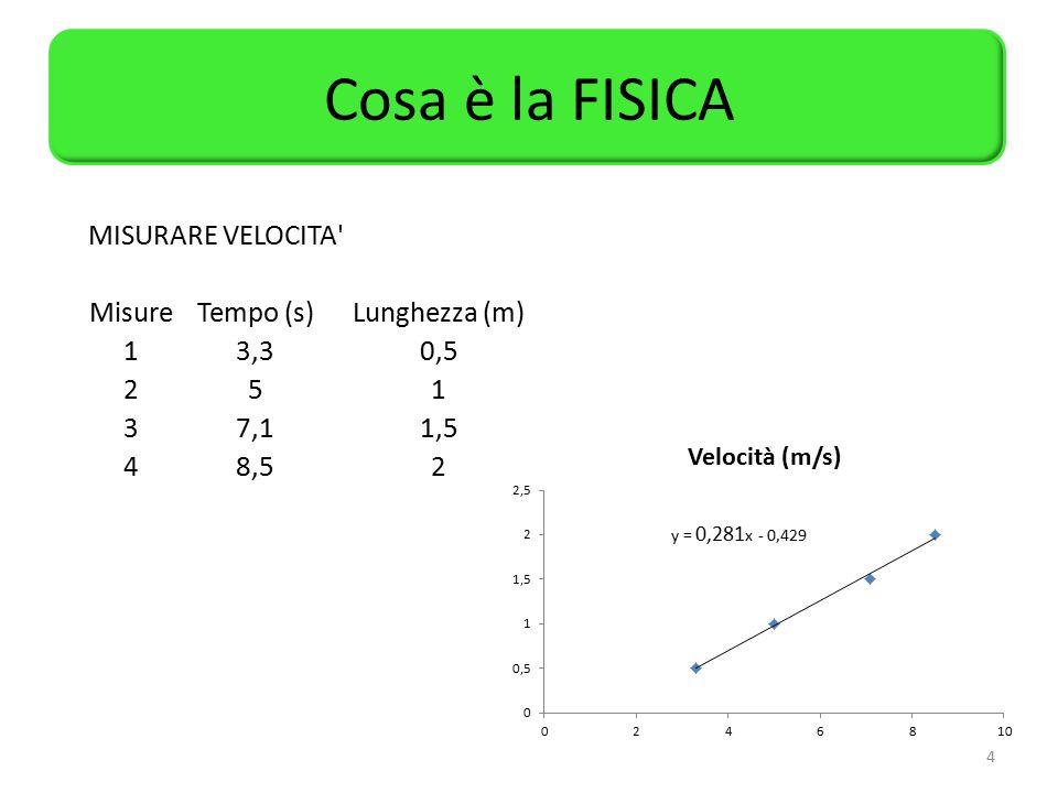 Cosa è la FISICA MISURARE VELOCITA Misure Tempo (s) Lunghezza (m) 1