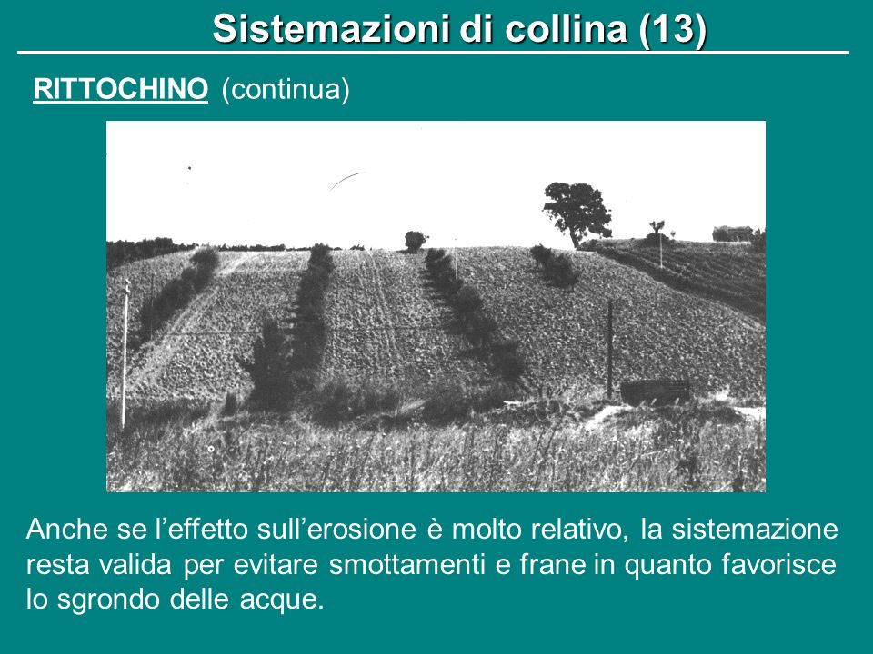 Sistemazioni di collina (13)