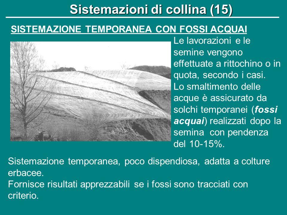 Sistemazioni di collina (15)