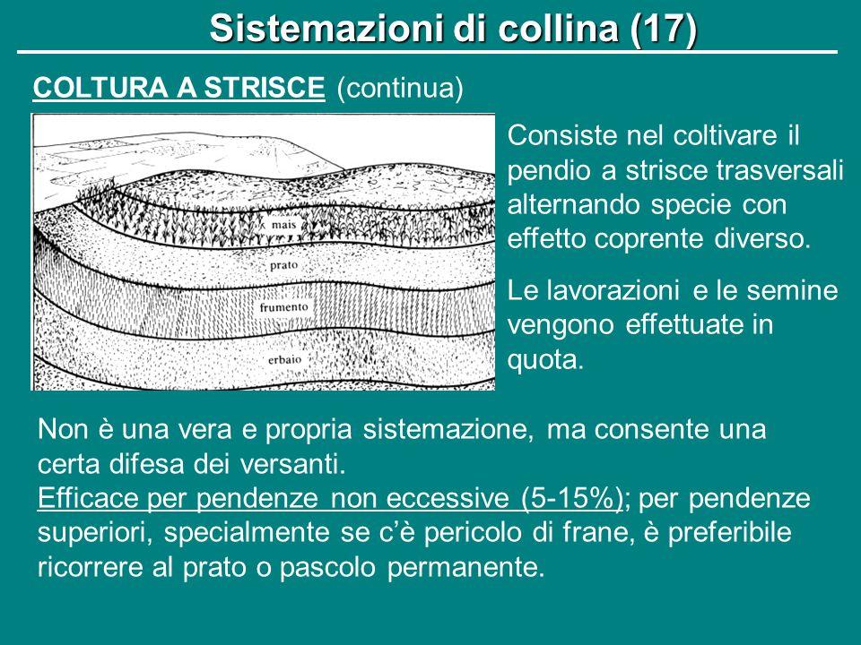 Sistemazioni di collina (17)