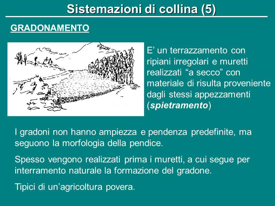 Sistemazioni di collina (5)