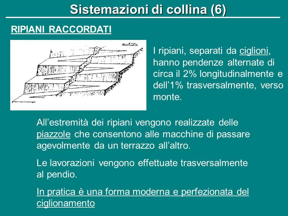 Sistemazioni di collina (6)