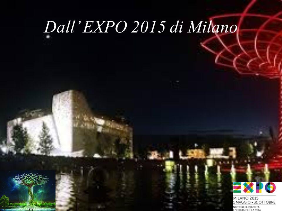 Dall' EXPO 2015 di Milano