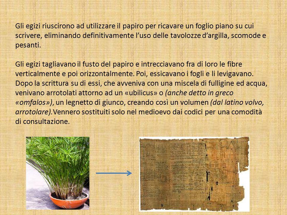 Gli egizi riuscirono ad utilizzare il papiro per ricavare un foglio piano su cui scrivere, eliminando definitivamente l'uso delle tavolozze d'argilla, scomode e pesanti.