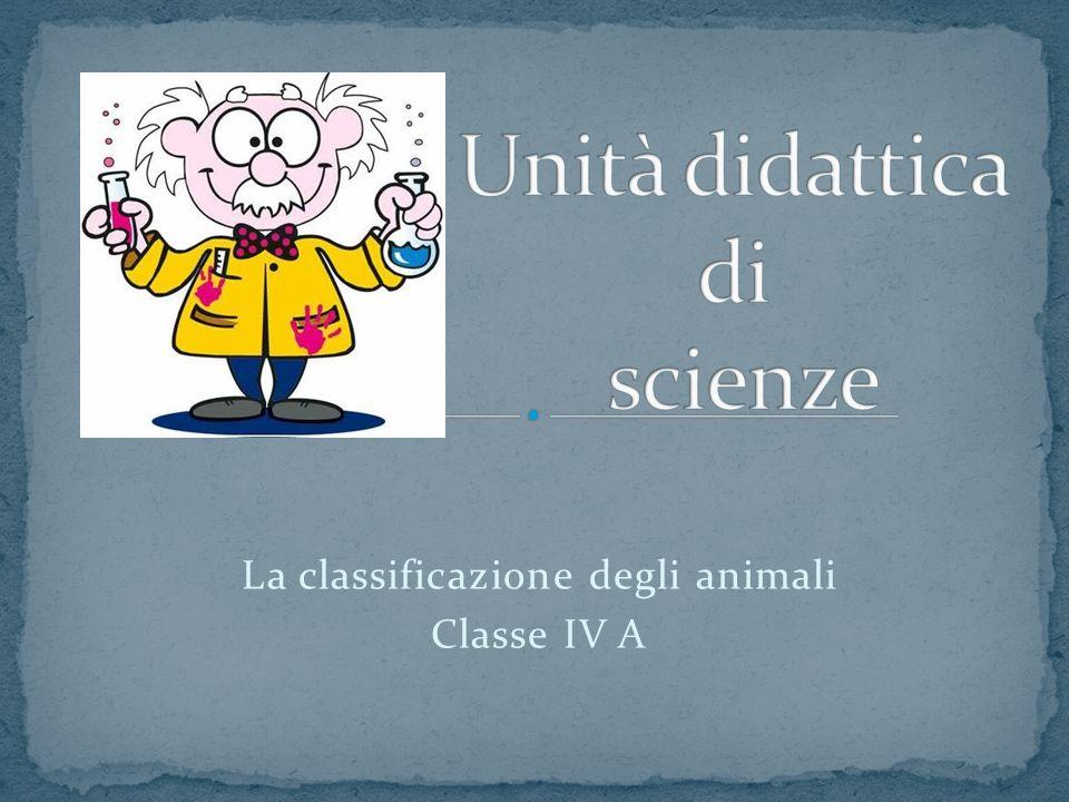 Unità didattica di scienze