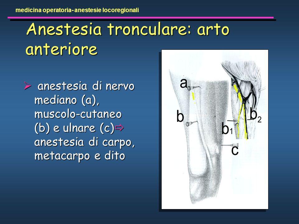Anestesia tronculare: arto anteriore