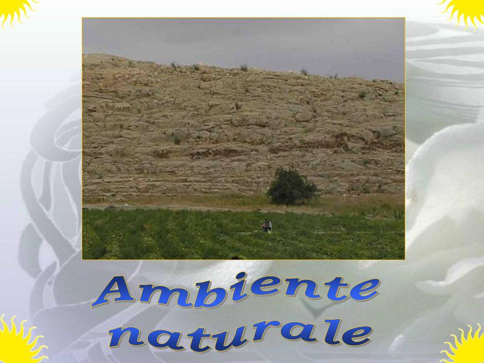 Ambiente naturale