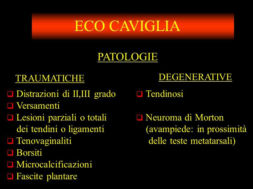 ECO CAVIGLIA PATOLOGIE TRAUMATICHE DEGENERATIVE