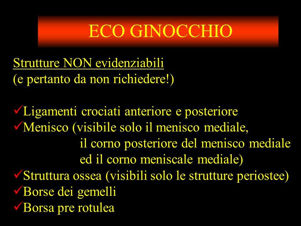ECO GINOCCHIO Strutture NON evidenziabili