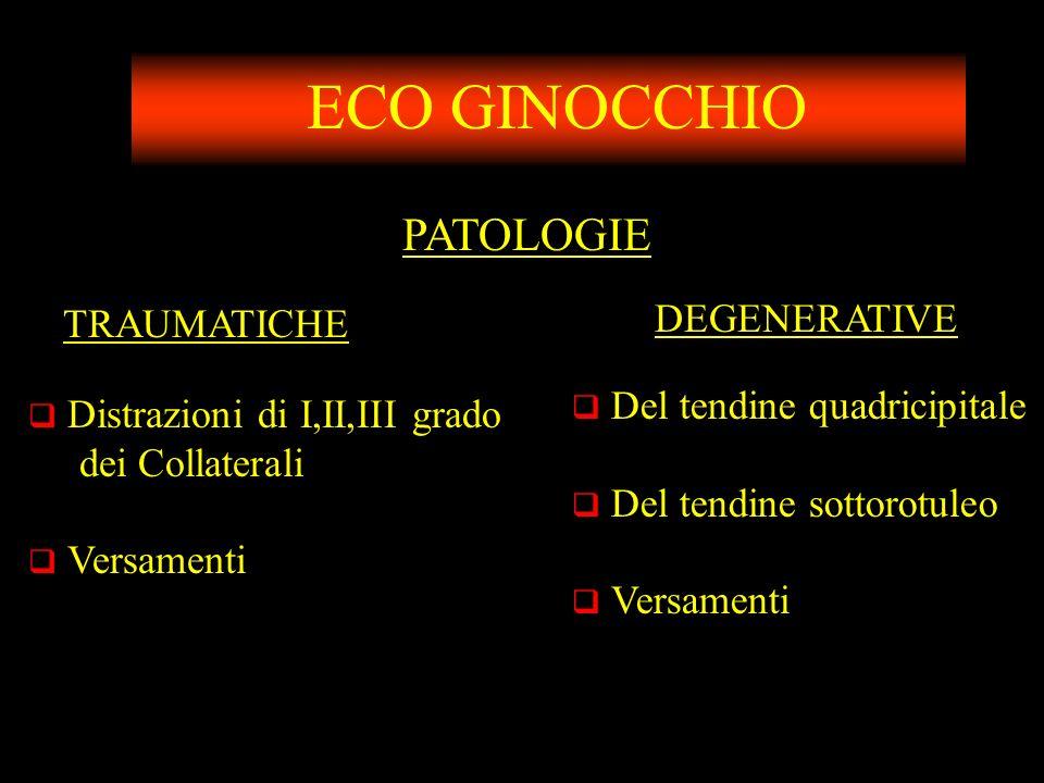 ECO GINOCCHIO PATOLOGIE DEGENERATIVE TRAUMATICHE