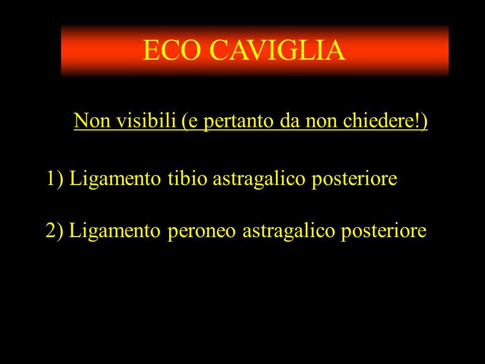 ECO CAVIGLIA Non visibili (e pertanto da non chiedere!)