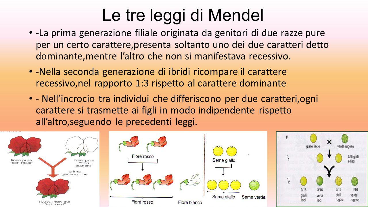 Le tre leggi di Mendel