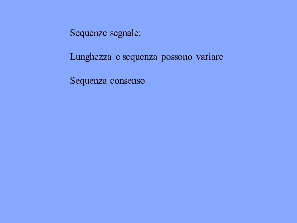Sequenze segnale: Lunghezza e sequenza possono variare Sequenza consenso