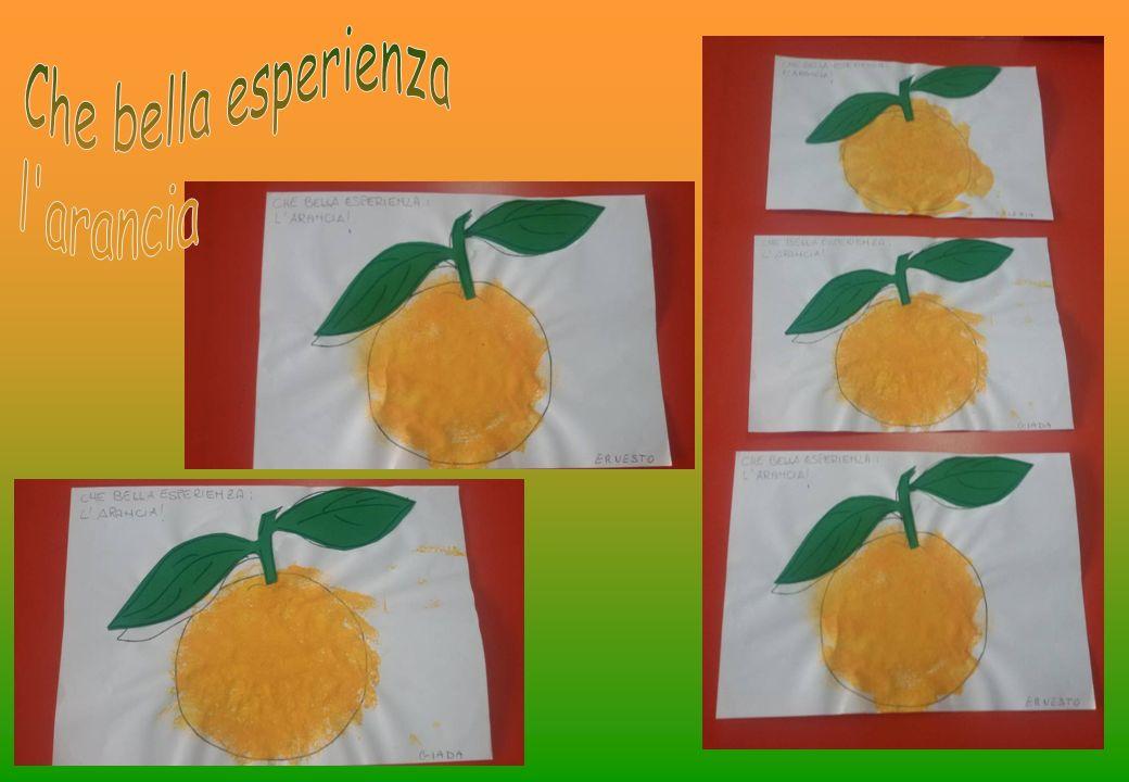 Che bella esperienza l arancia