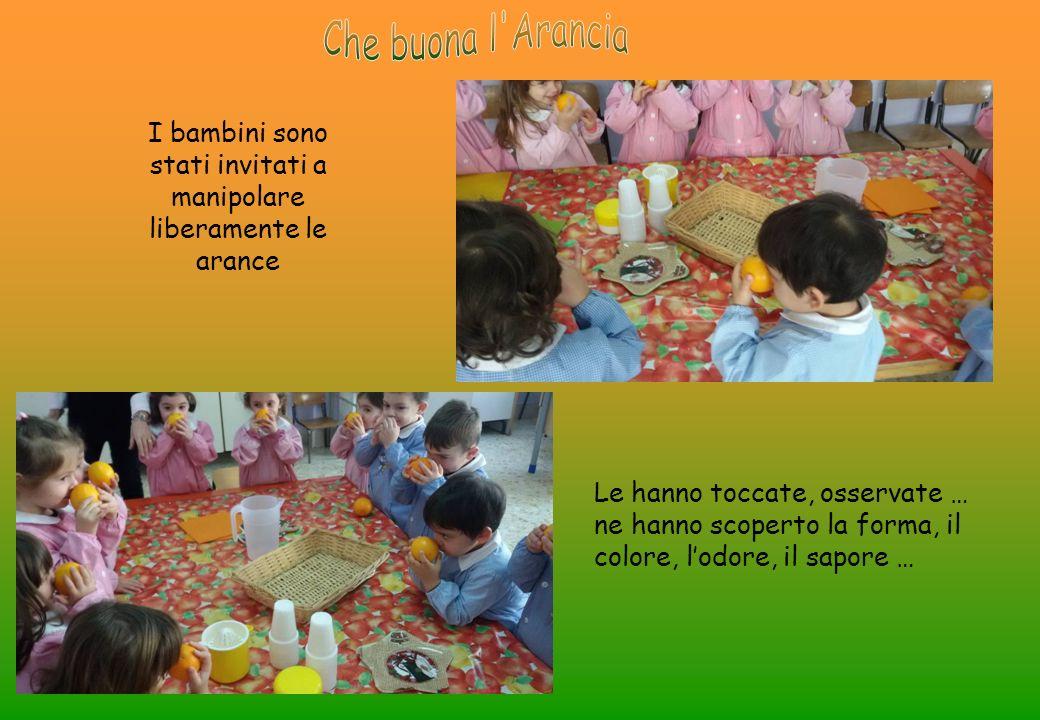 I bambini sono stati invitati a manipolare liberamente le arance