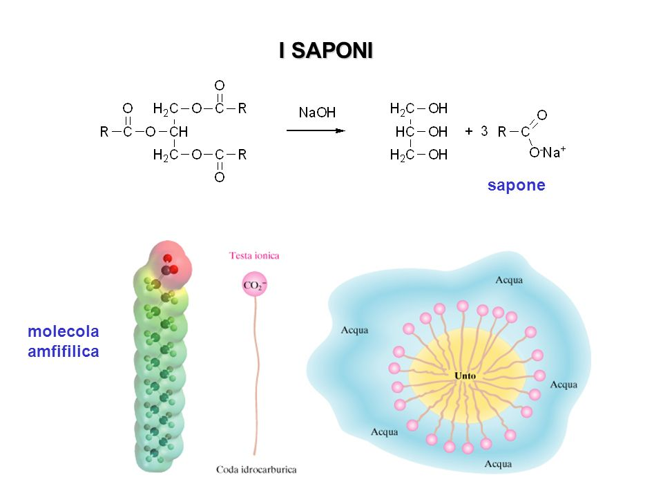 nandrolone watson