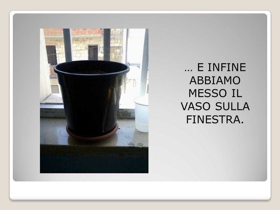 … E INFINE ABBIAMO MESSO IL VASO SULLA FINESTRA.