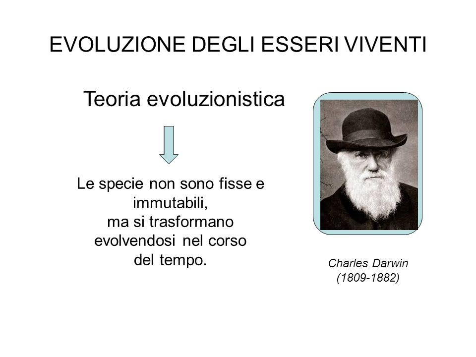 EVOLUZIONE DEGLI ESSERI VIVENTI