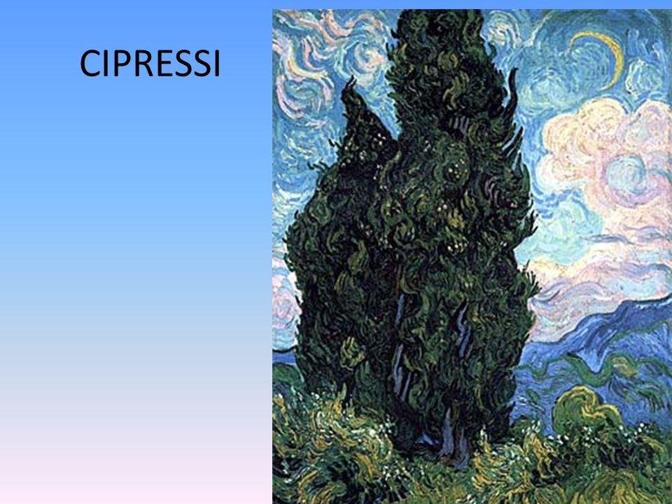 CIPRESSI