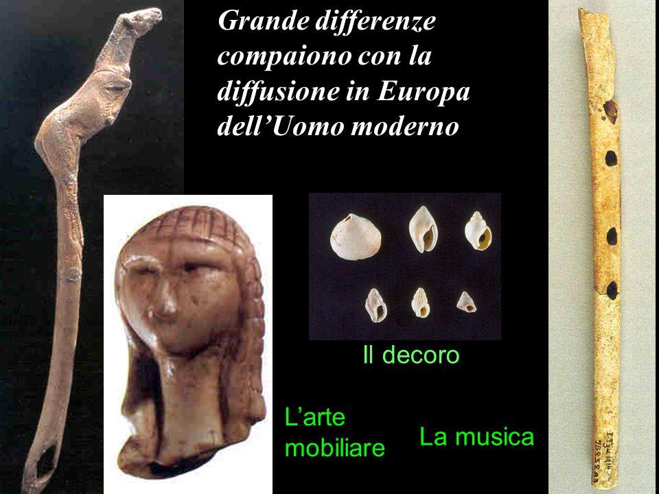 homo neanderthalensis e homo sapiens storia di una