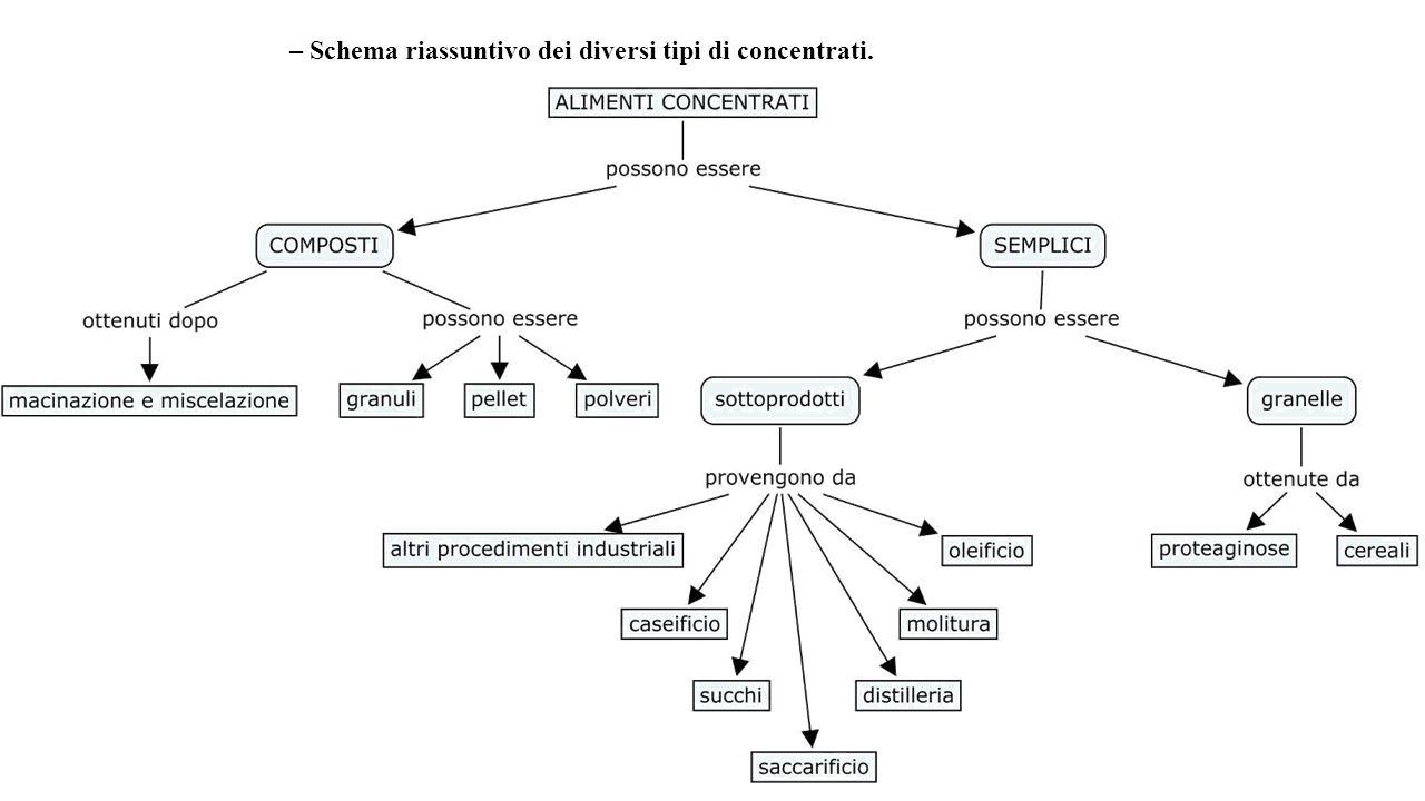 Classificazione degli alimenti ppt scaricare - Diversi tipi di figa ...