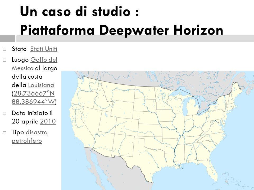 Un caso di studio : Piattaforma Deepwater Horizon