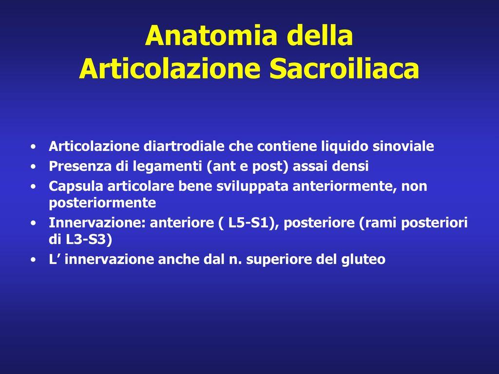 Anatomia della Articolazione Sacroiliaca