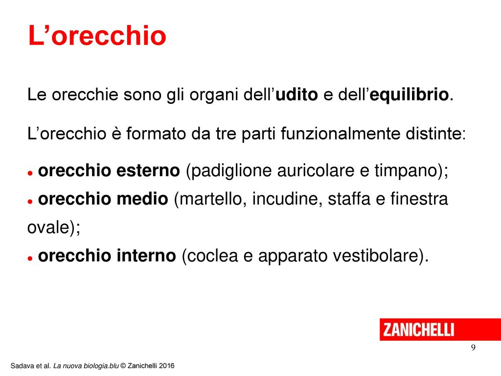 13 11 Ppt Video Online Scaricare