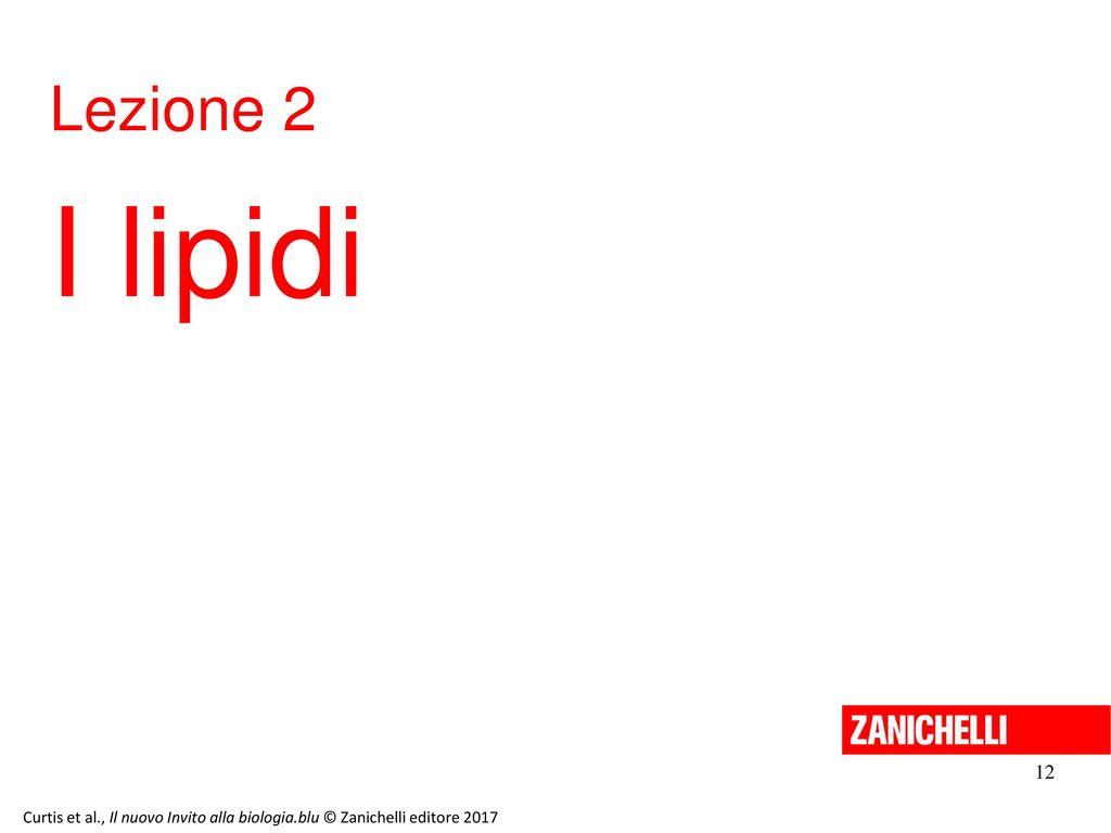 13/11/11 Lezione 2. I lipidi. 12. Curtis et al., Il nuovo Invito alla biologia.blu © Zanichelli editore 2017.