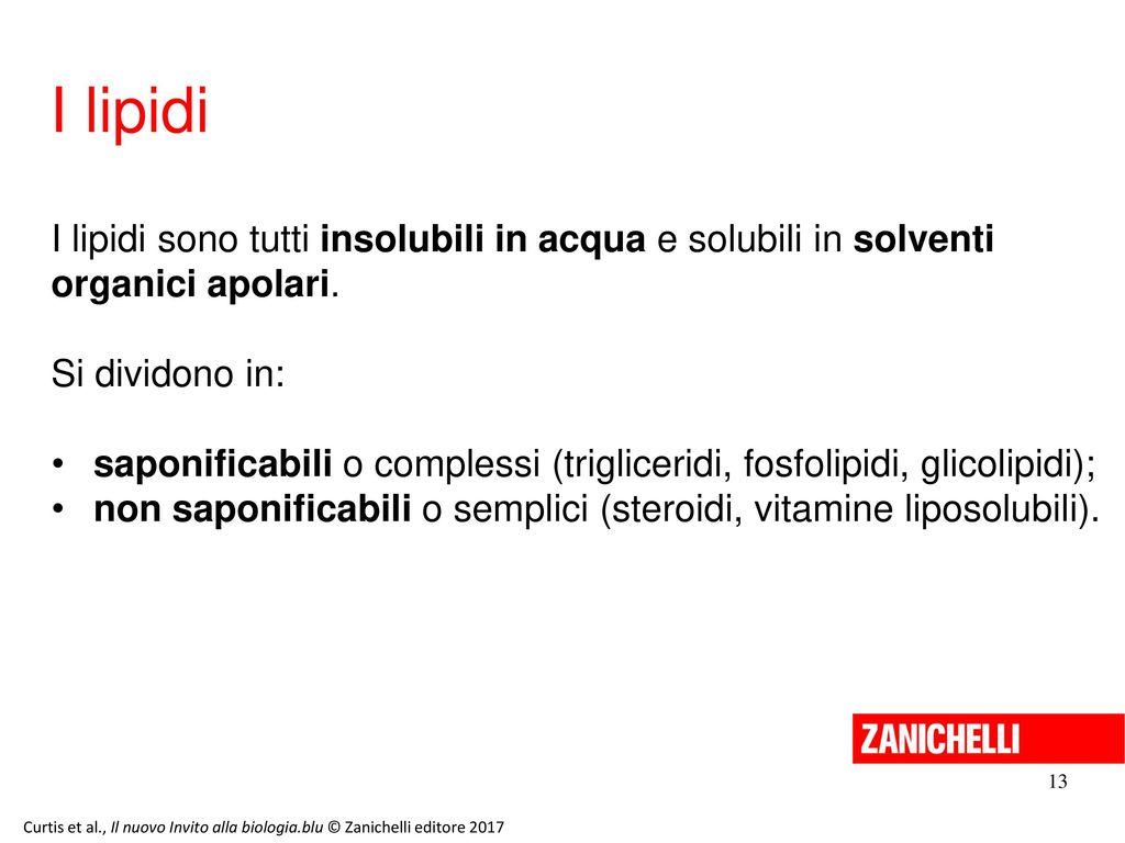 13/11/11 I lipidi. I lipidi sono tutti insolubili in acqua e solubili in solventi organici apolari.