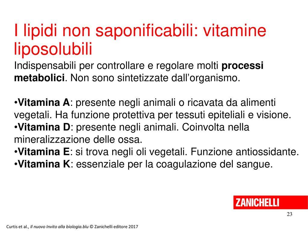I lipidi non saponificabili: vitamine liposolubili
