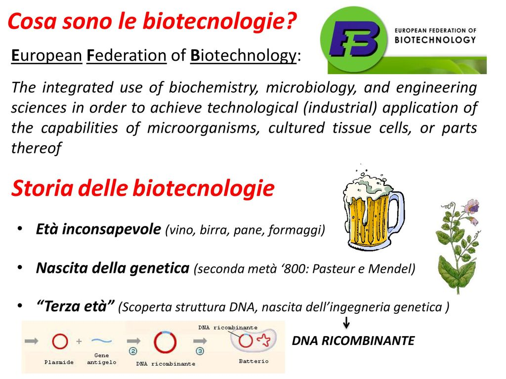 Le biotecnologie vegetali ppt scaricare - Pagamenti diversi bnl cosa sono ...