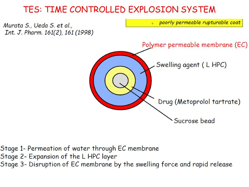 TES: TIME CONTROLLED EXPLOSION SYSTEM