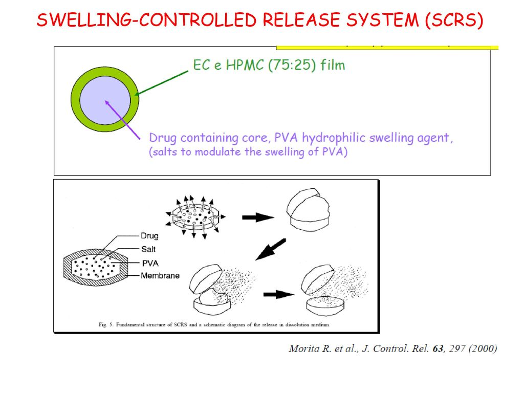 SWELLING-CONTROLLED RELEASE SYSTEM (SCRS)