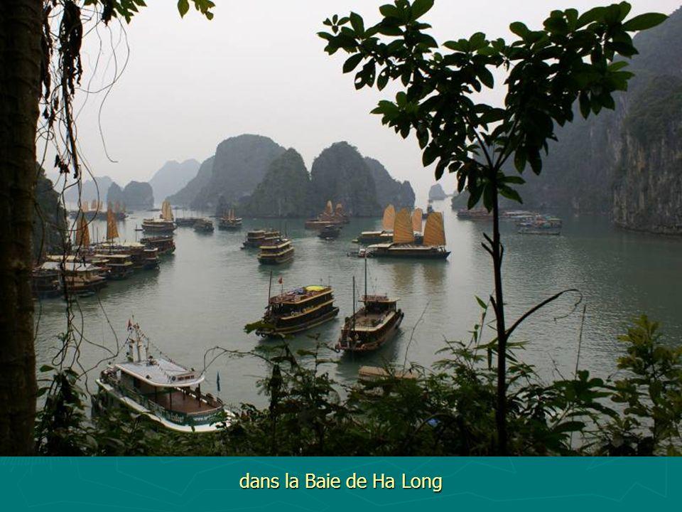 dans la Baie de Ha Long