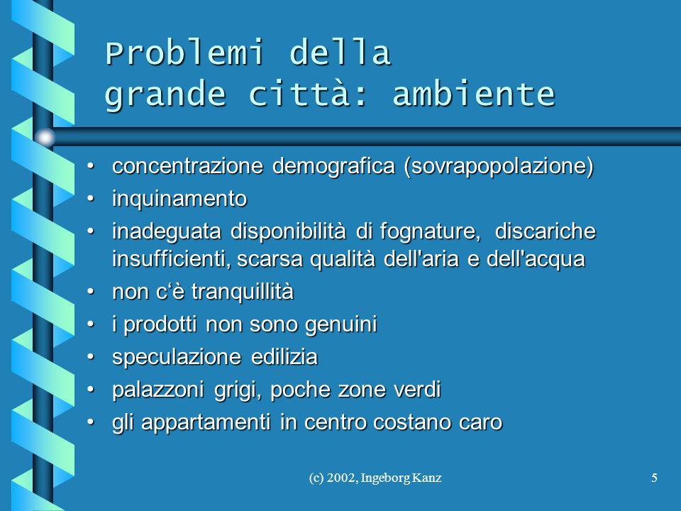 Problemi della grande città: ambiente