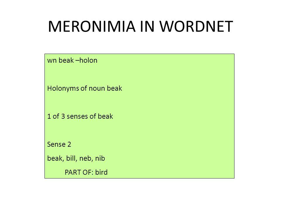 MERONIMIA IN WORDNET wn beak –holon Holonyms of noun beak