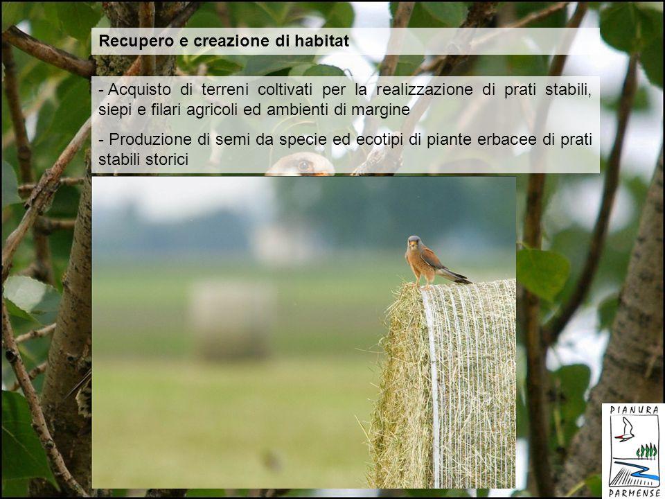 Recupero e creazione di habitat