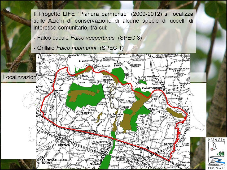 Il Progetto LIFE Pianura parmense (2009-2012) si focalizza sulle Azioni di conservazione di alcune specie di uccelli di interesse comunitario, tra cui: