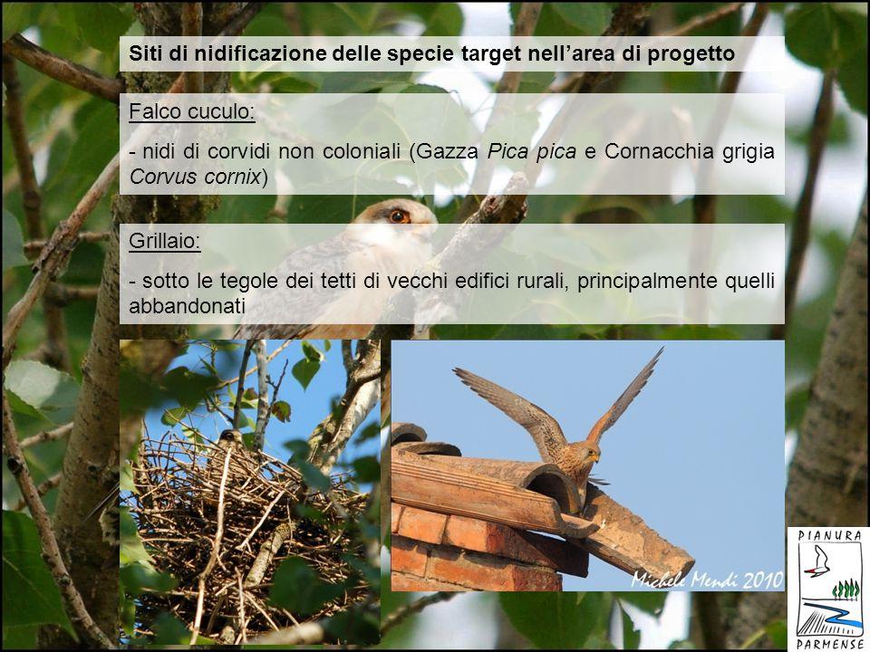 Siti di nidificazione delle specie target nell'area di progetto
