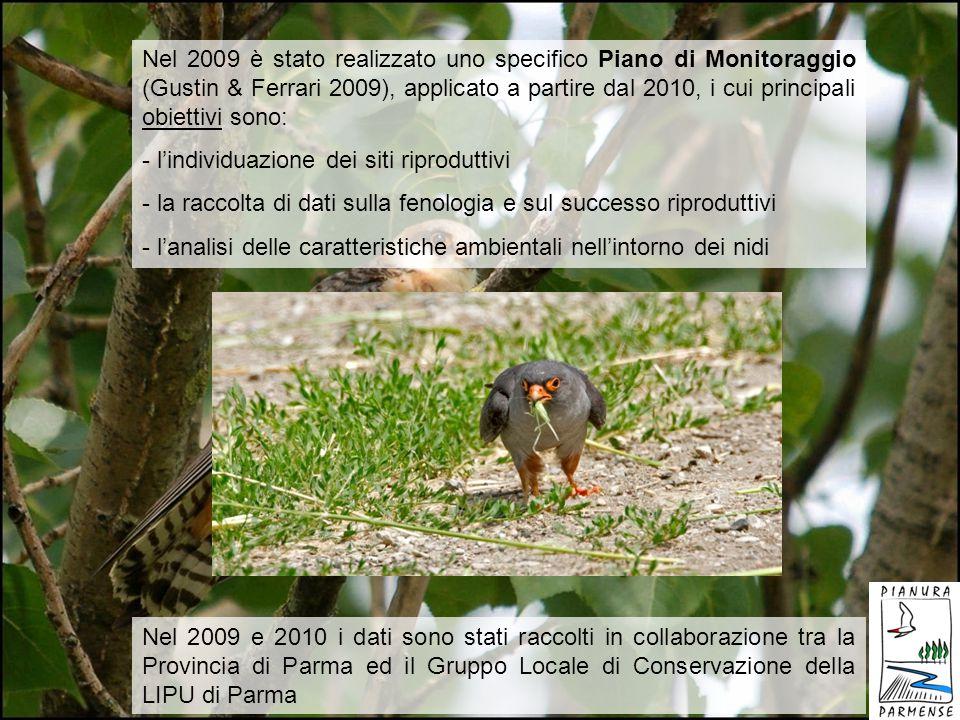 Nel 2009 è stato realizzato uno specifico Piano di Monitoraggio (Gustin & Ferrari 2009), applicato a partire dal 2010, i cui principali obiettivi sono: