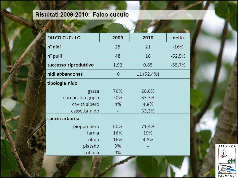 Risultati 2009-2010: Falco cuculo
