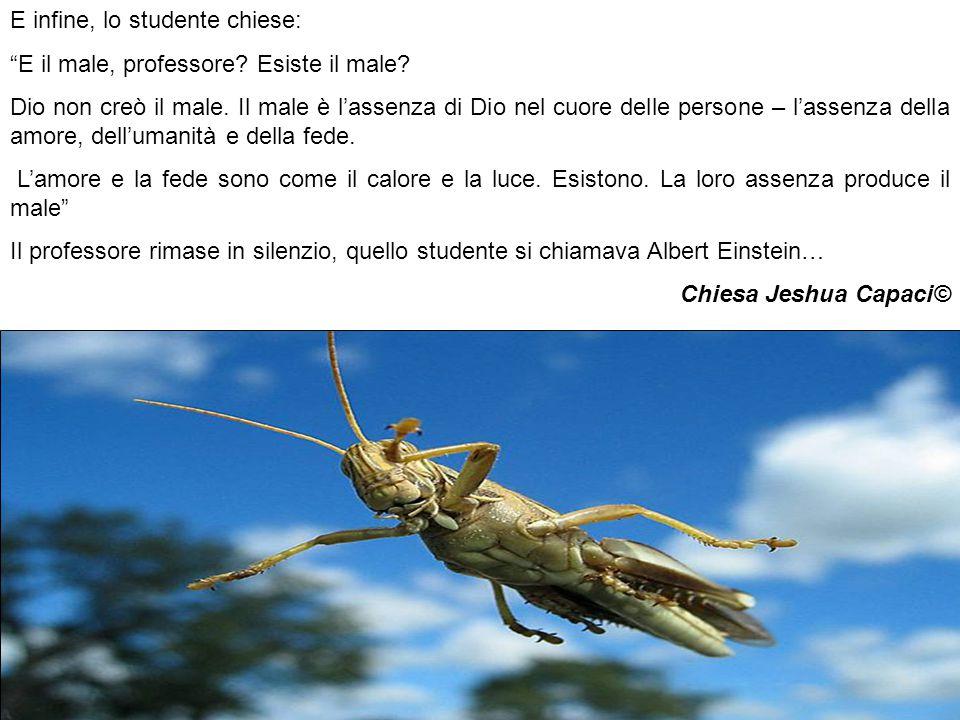 E infine, lo studente chiese: