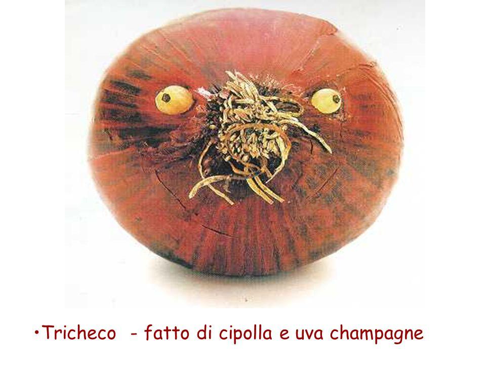 Tricheco - fatto di cipolla e uva champagne
