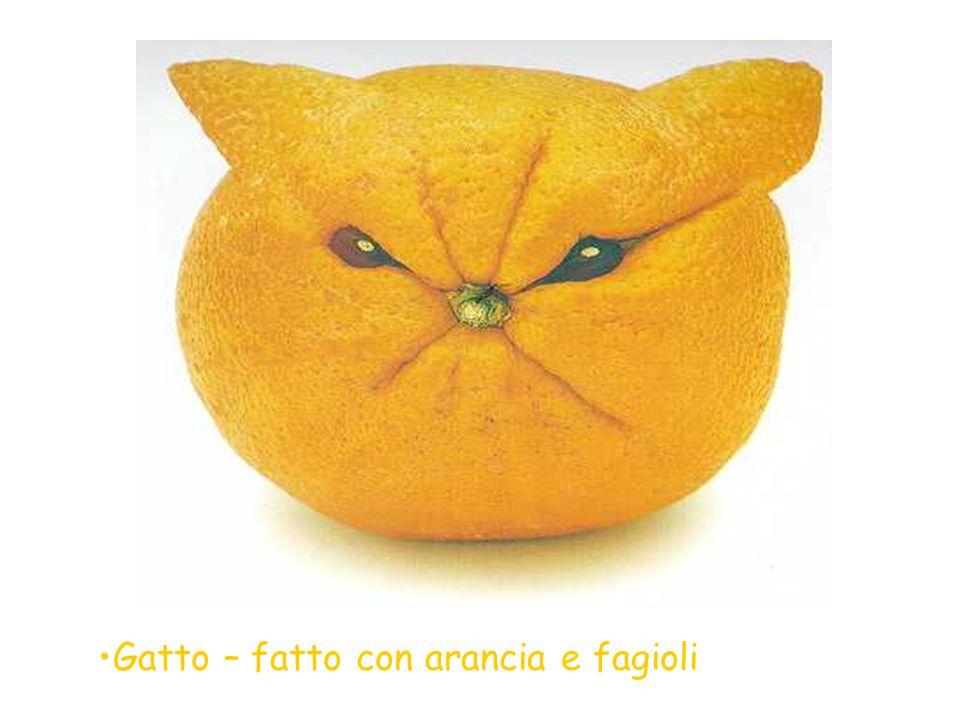 Gatto – fatto con arancia e fagioli