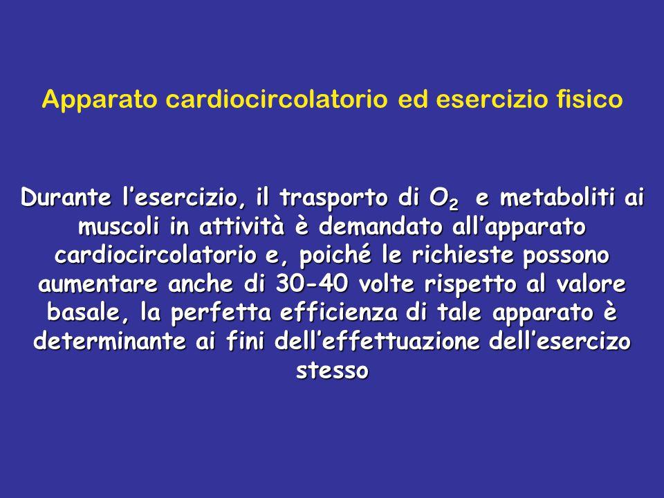 Apparato cardiocircolatorio ed esercizio fisico