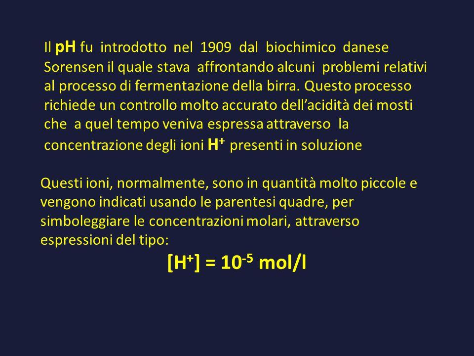 Il pH fu introdotto nel 1909 dal biochimico danese Sorensen il quale stava affrontando alcuni problemi relativi al processo di fermentazione della birra. Questo processo richiede un controllo molto accurato dell'acidità dei mosti che a quel tempo veniva espressa attraverso la concentrazione degli ioni H+ presenti in soluzione