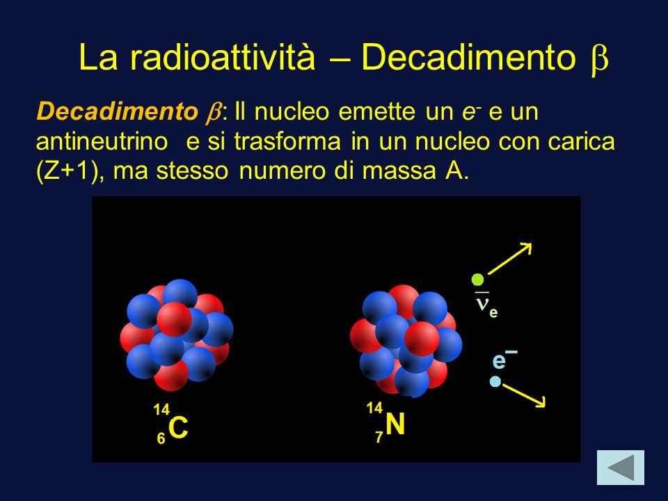 La radioattività – Decadimento b