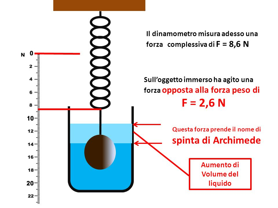 Il dinamometro misura adesso una forza complessiva di F = 8,6 N