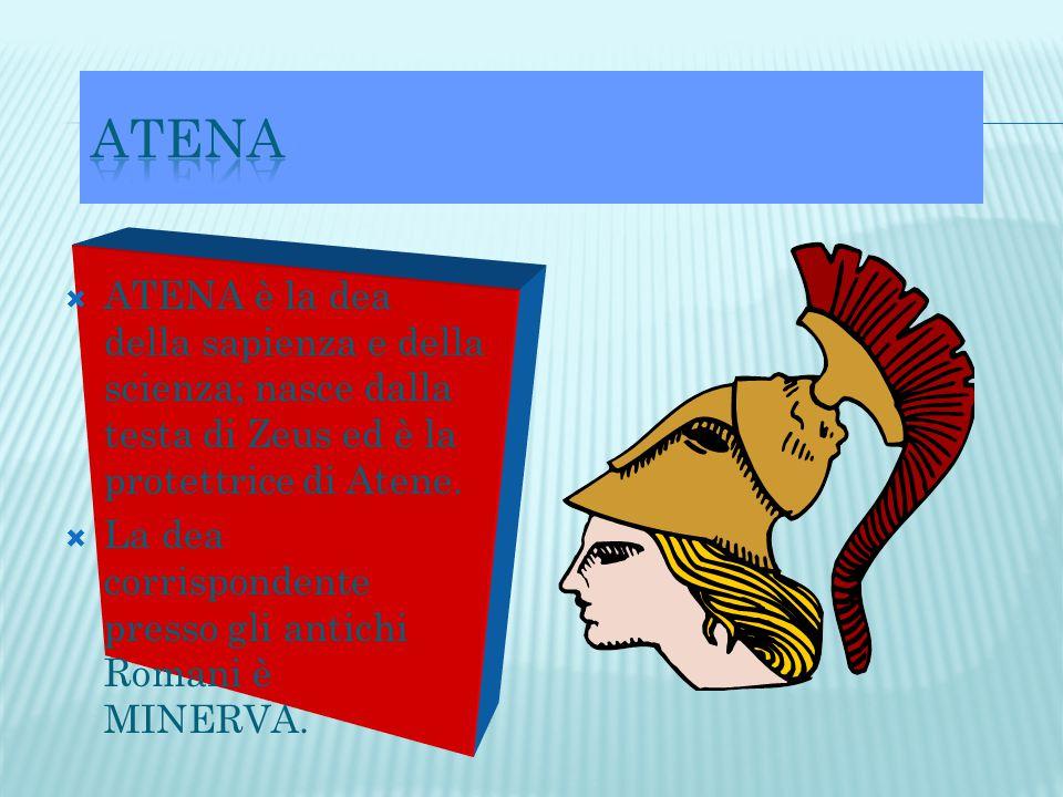 ATENA ATENA è la dea della sapienza e della scienza; nasce dalla testa di Zeus ed è la protettrice di Atene.